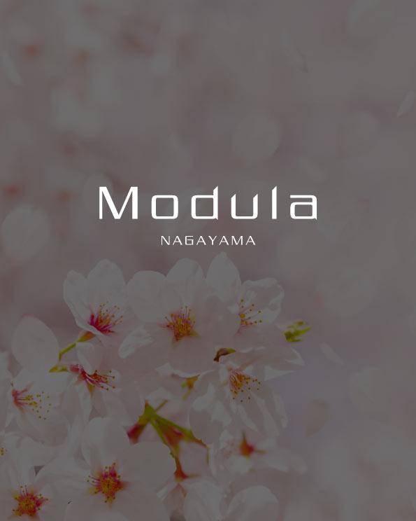 Modula永山 さくらの丘【新築分譲住宅】のイメージ画像