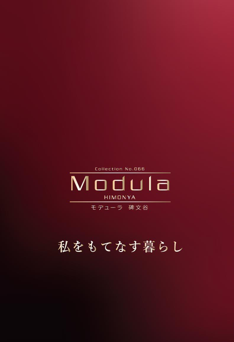 【完売】Modula碑文谷【土地分譲】のイメージ画像