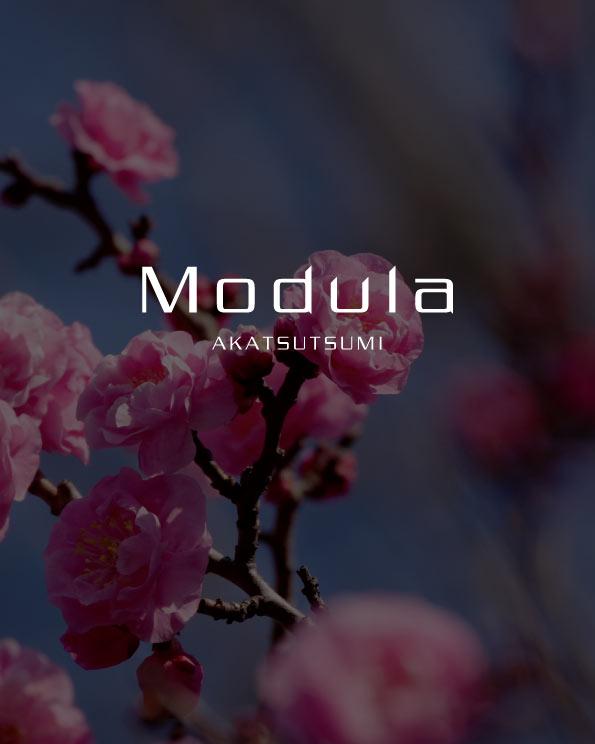 Modula赤堤のイメージ