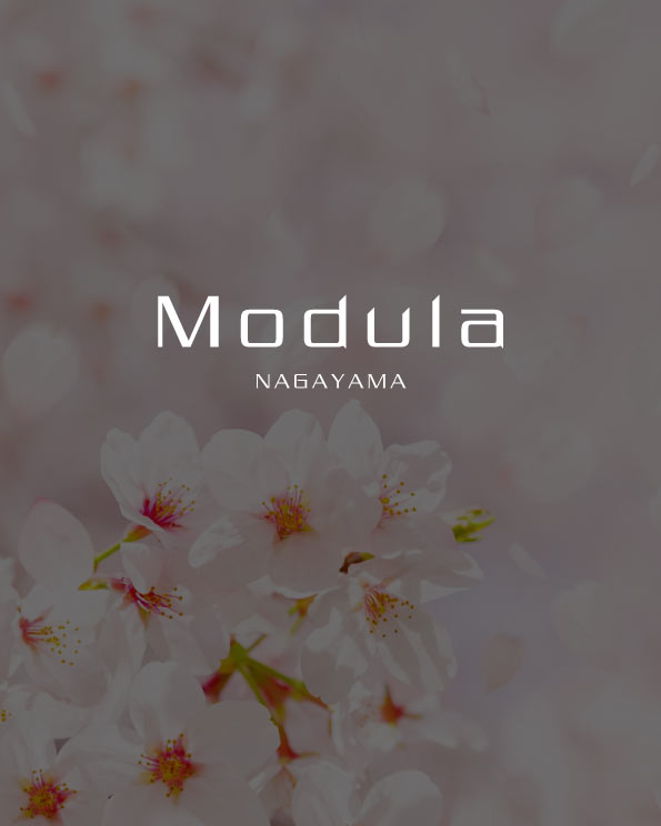 Modula永山 さくらの丘のイメージ